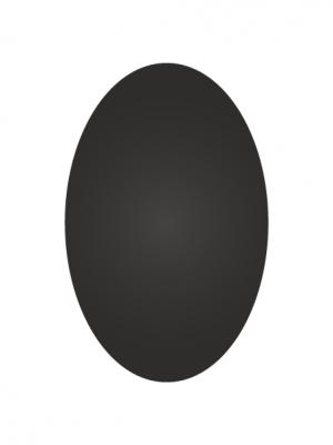 Vinyle ardoise ovale - image 0