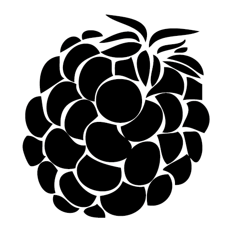 Sticker Framboise