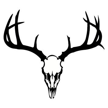 Sticker crâne de cerf CHPE09