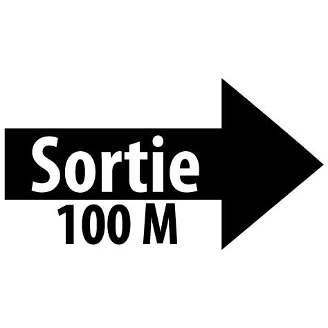 Sticker flèche sortie droite 100M : SF17