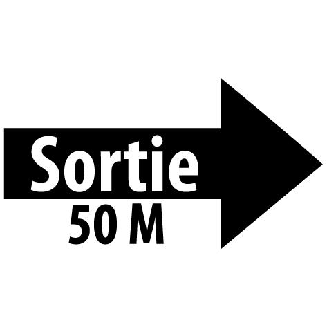 Sticker flèche sortie droite 50M : SF17