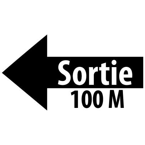Sticker flèche sortie gauche 100M : SF17