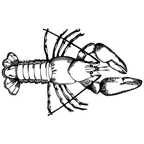 Achat Sticker langouste : SP01
