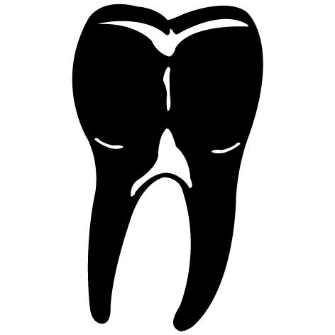 Achat Sticker molaire  MPS03
