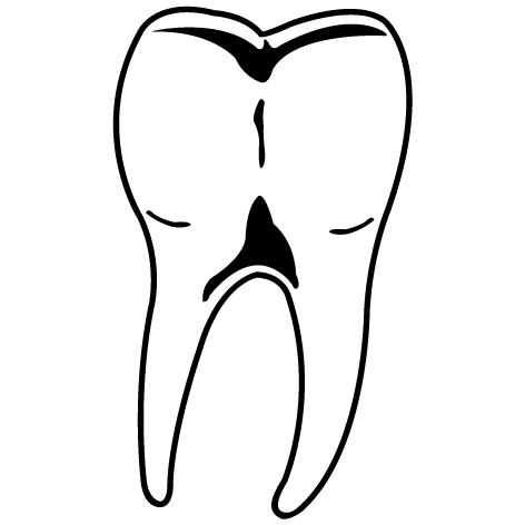 Sticker molaire : MPS01
