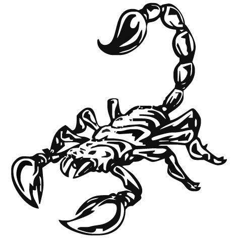 Achat Sticker scorpion : 01
