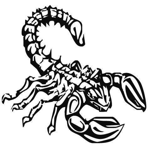Achat Sticker scorpion : 02