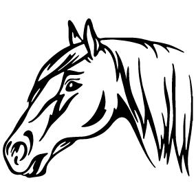 Achat Sticker tête de cheval - 2