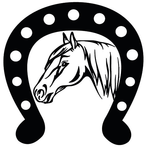 Sticker tête de cheval : 3