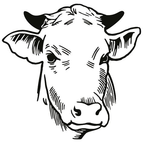 Sticker tête de veau : 01