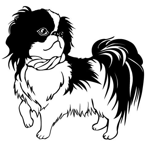 Achat Sticker toilettage canin : 11