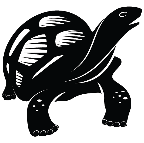 Sticker tortue : SCB08
