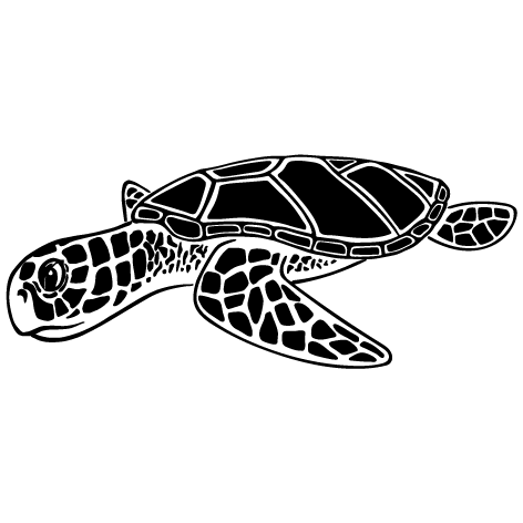 Achat Sticker tortue : 02