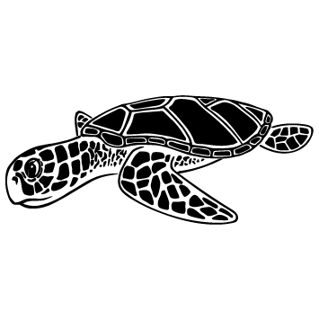 Sticker tortue : SCC02