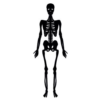 Sticker squelette