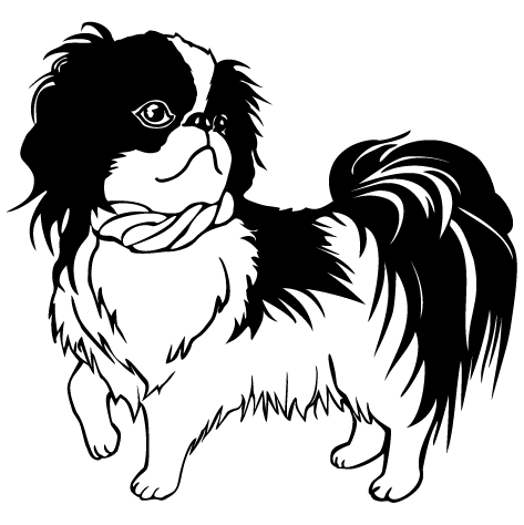 Sticker toilettage canin : 11