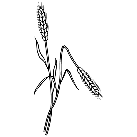Achat Sticker blé