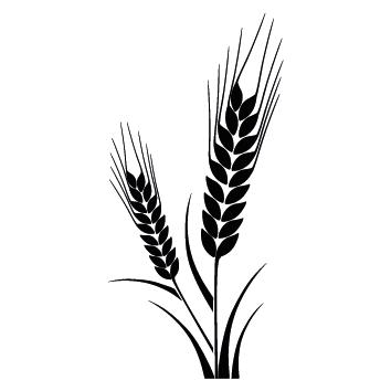 Stickers épis de blé