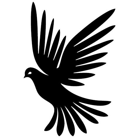 Étude d'oiseau volant