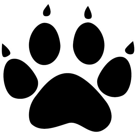 Patte de chat avec griffes