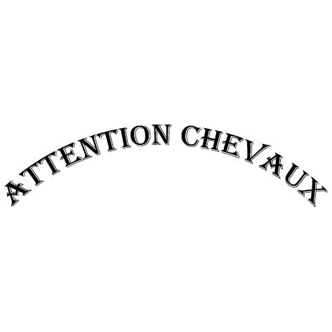 Sticker attention chevaux