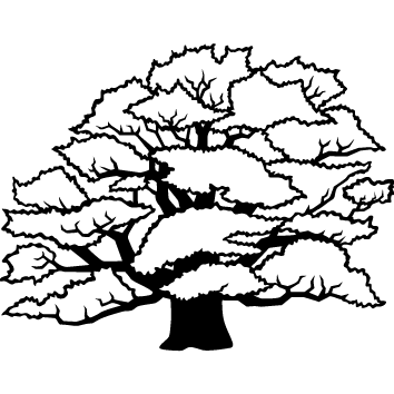 Sticker arbre : 02