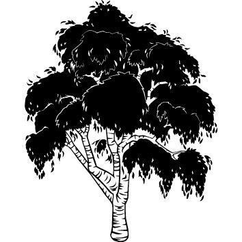 Sticker arbre : 05