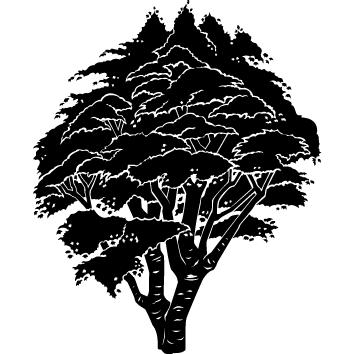 Sticker arbre : 06