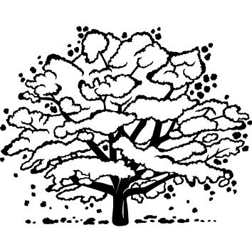 Sticker arbre : 07