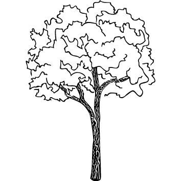 Sticker arbre : 09