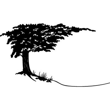 Sticker arbre : 10