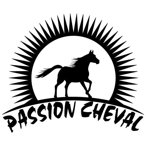 Achat Sticker passion cheval : droite