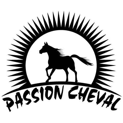 Achat Sticker passion cheval : gauche