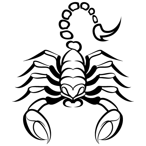 Achat Sticker scorpion : 03