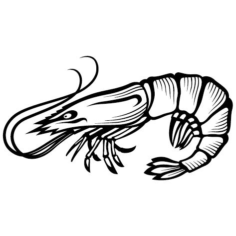 Sticker crevette