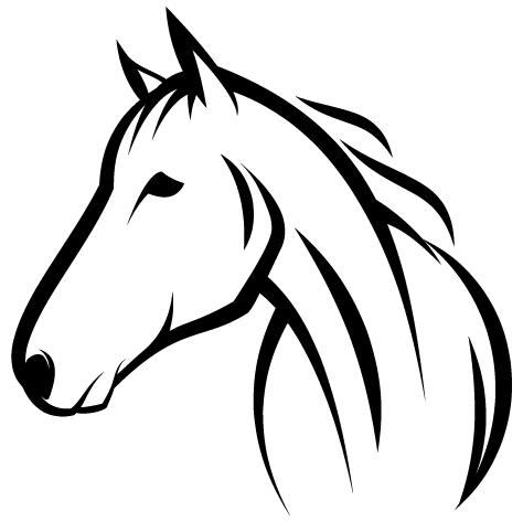 Tête crinière cheval