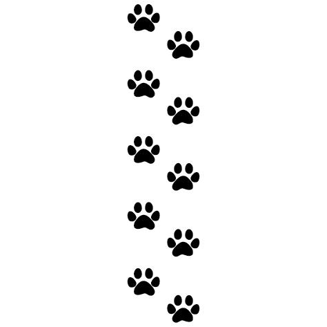 Trace de 10 pattes de chat
